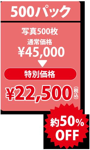 500パック 特別価格 \22,500 (税込)